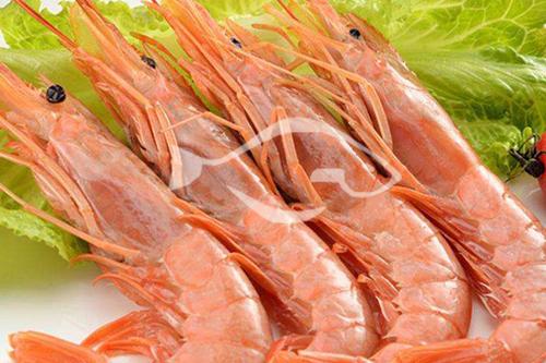 进口海鲜 阿根廷红虾营养