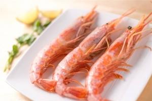 阿根廷红虾食用价值